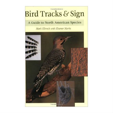 Bird Tracks and Sign