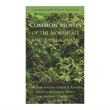 Common Mosses