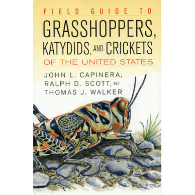 Field Guide to Grasshoppers