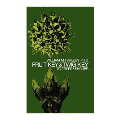 Fruit Key