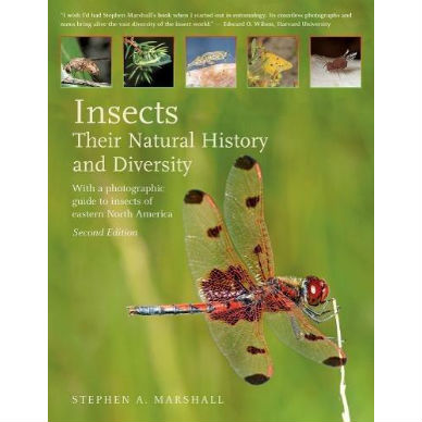 Insects Their Natural History and Diversity 2nd edition
