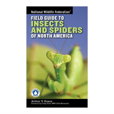 National Wildlife Federation Field Guide to Insects