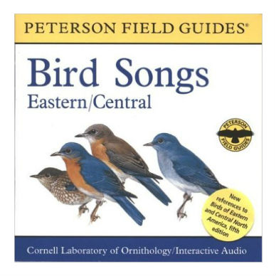 Bird Songs Eastern