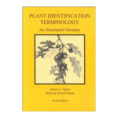 Plant Identification Terminology
