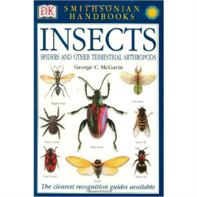 Smithsonian Handbook of Insects