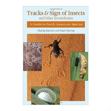 Tracks and Sign of Insects