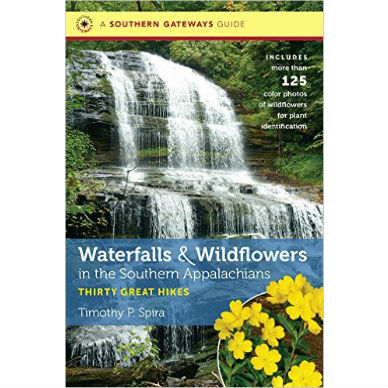 Waterfalls and Wildflowers