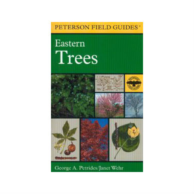 Peterson Field Guide Eastern Trees